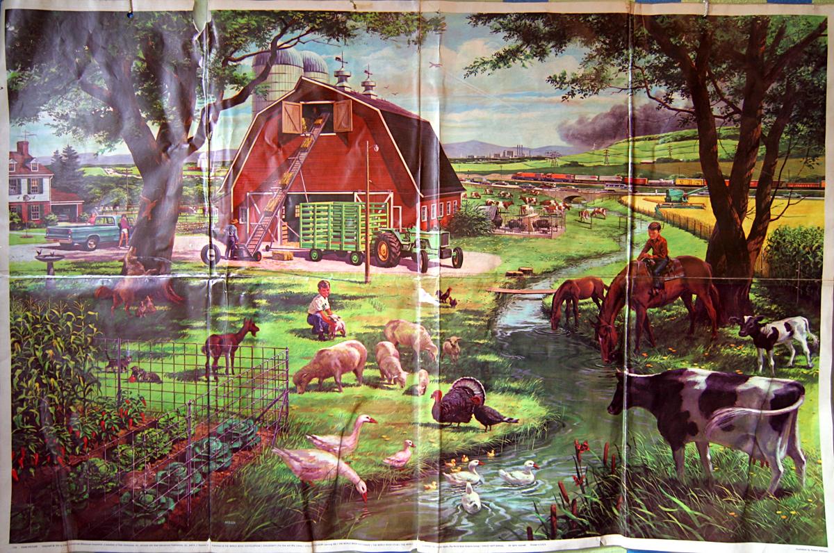 Childcraft Encyclopedia Set 1-15 Childrens Lot (SAY34-627)
