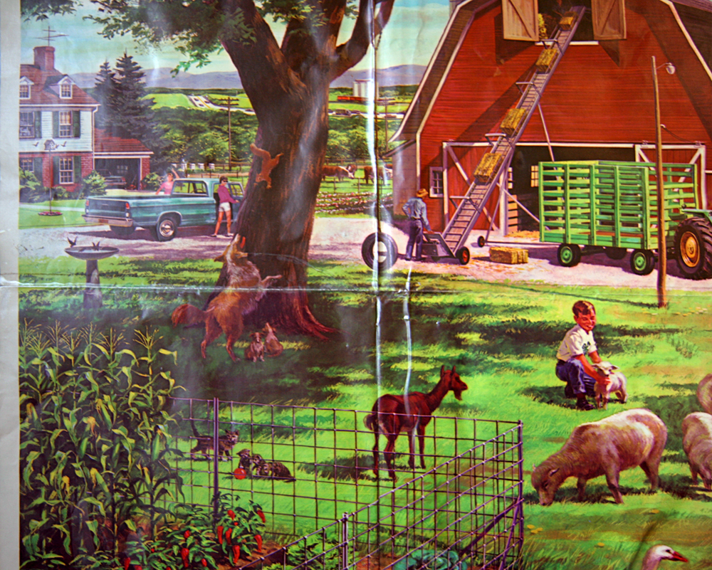 "essay farm city From ""farm city,"" by novella carpenter reprinted by arrangement with penguin press,  loading first chapter: 'farm city,' by novella carpenter."