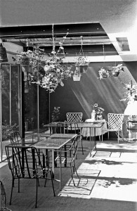 The patio of Shulman's home. Photo by David Laslie.